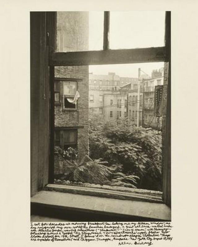 Η θέα από το παράθυρο της κουζίνας του Γκίνσμπεργκ (1984)