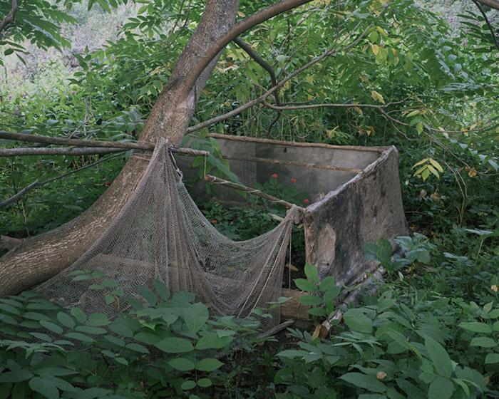 living-in-the-wild-escape-danila-tkachenko-10