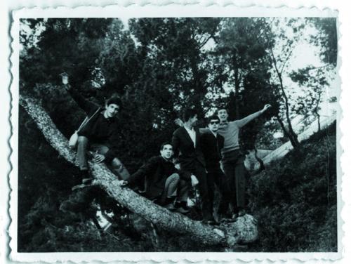 7.Πάνω-στο-δέντρο